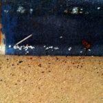plostica-nalez-vajicka